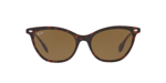 Top Havana On Light Brown / Dark Brown
