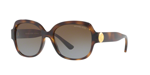 DARK TORTOISE/brown gradient polarized