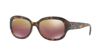Ray Ban Rb 4282Ch 710/6B